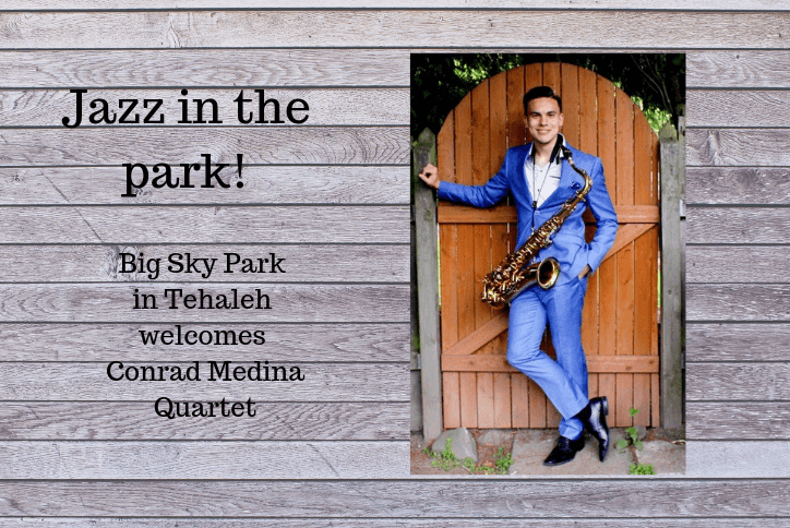 Jazz in the park event flyer showing saxophone player in suit.