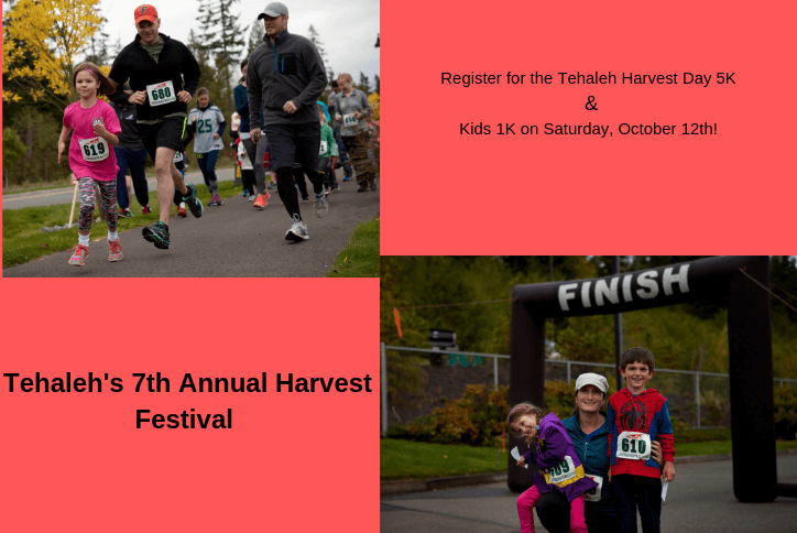 Marathon collage for Tehaleh's seventh annual harvest festival.
